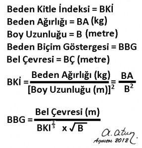 "Formula of ""A Body Shape Index"" ABSI by ATA ATUN"