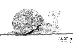 Garavolli-Sümüklüböcek-Snail