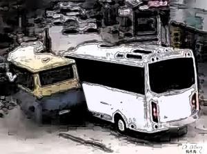 Minibüs Yolcu Taşımacılığı