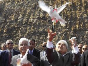 Rumlar Kıbrıs'ta Barışı Katlediyor